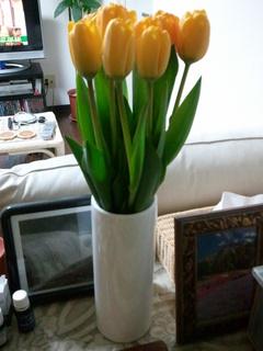 2011-03-18 01.40.08.jpg