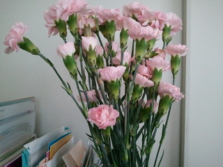 2011-04-02 10.13.51.jpg