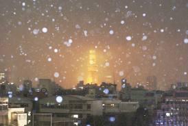 都心の雪.jpg